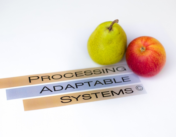 processing_adaptable_system_apple_paron_3.jpg